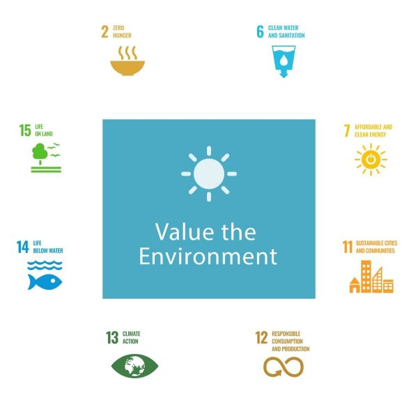 more-about-value-environment